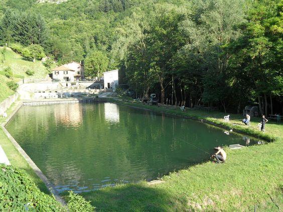 La pesca sportiva della Trota è una delle attività preferite dell'area di Papiano. Ecco i nostri agriturismi in tutta Italia vicini a zone dove è possibile pescare! CLICCA QUI: http://www.agriturismo.com/leggiAgriturismi.asp?idLingua=1 #agriturismo #pesca #attività #sport #trota #pesce #fiume #lago #brace #italia #italy