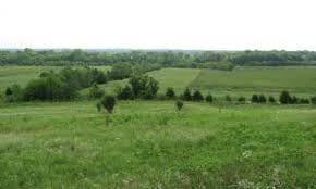 Mississippi Prairie