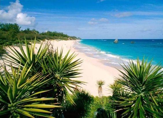 Arrivando a Bermuda, ammiravo il mare dall' aereo. I colori erano così brillanti, in alcuni punti di colore smeraldo, altrove blu o turchese e poi ancora grigio-blu. La terra ferma era spezzettata, non era unita. Era formata da piccole isole con fitta vegetazione, con piccole baie, dove barche a vela erano ormeggiate qui e là. Bassissime colline con molti alberi, panorama interrotto solo da piccole case con tetti imbiancati, pareti rosa e spiagge dove la sabbia era altrettanto rosa.
