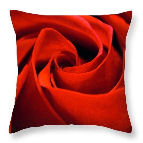 A Red Red Rose Throw Pillow For Sale By Blue Lens Photography Uk Photography By Neil R Finlay Blue Lenses Red Roses Uk Photography