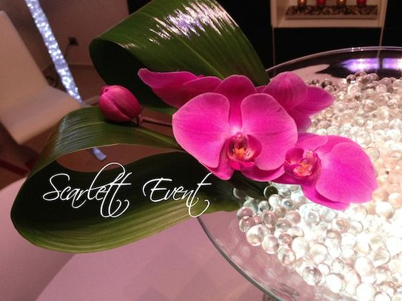 vase martini orchid es phalaenopsis deco mariage. Black Bedroom Furniture Sets. Home Design Ideas