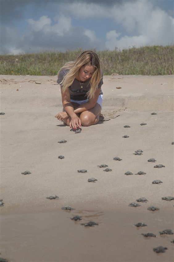 Lauren Conrad Was Surrounded By Thousands of Baby Sea Turtles | Azula