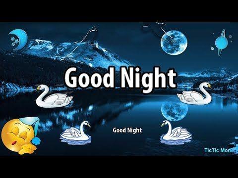 Good Night Whatsapp Status Video Good Night Video Tictic