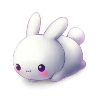 Kawaii !!! ( cute in Japanese ):