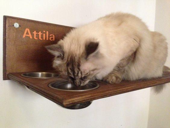 Mensola artigianale in legno con intagli e ciotole per gatti.