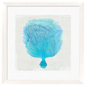 Gorgonian Framed Giclee Print