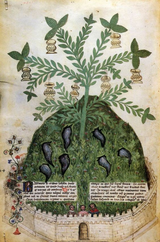 Tacuinum Sanitatis  1390s  Manuscript (Ms. 459)  Biblioteca Casanatense, Rome: