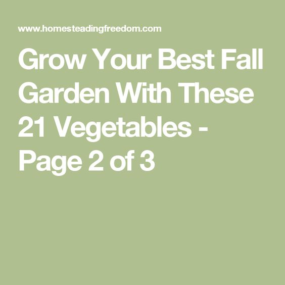 Grow Your Best Fall Garden With These 21 Vegetables - Page 2 of 3