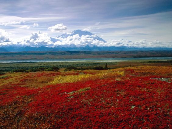 Outono paisagens - Papéis de Parede Grátis para PC: http://wallpapic-br.com/paisagens/outono-paisagens/wallpaper-39690