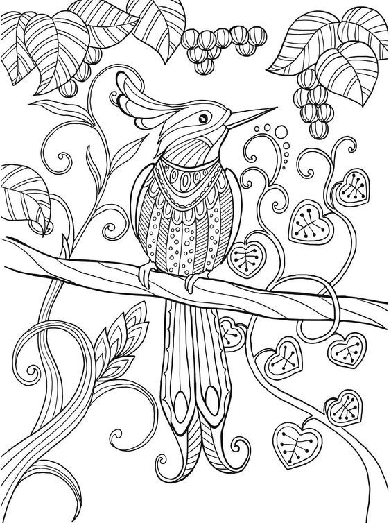 Omeletozeu Cat Coloring Page Coloring Pages Animal Coloring Pages