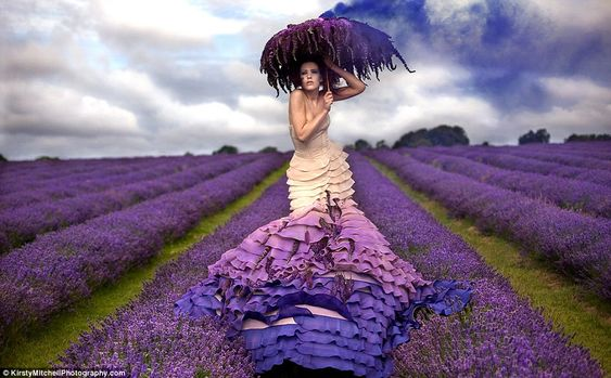 Lavender fields matron  - Series of wonderful photos and settings created by Kirsty Mitchel