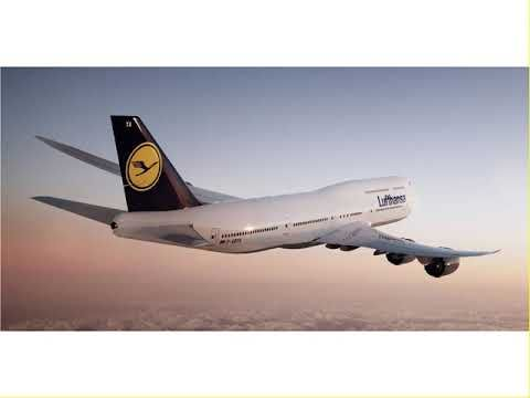 Lufthansa Airlines Reservations   Check Flight Status   Airline  reservations, Flight status, Airlines