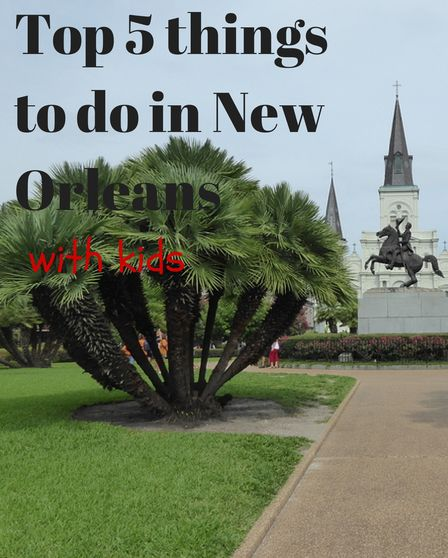 New orleans things to do and things to do in on pinterest for Things to do in mew orleans