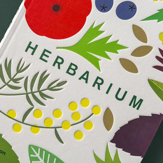 The cover of Here Design'snew book Herbarium, which explores the cultural and culinary value of herbs. Each illustrated chapter focuses on a different herb.