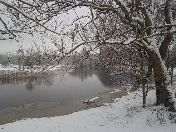 Raudna river is frozing, Soomaa, Estonia