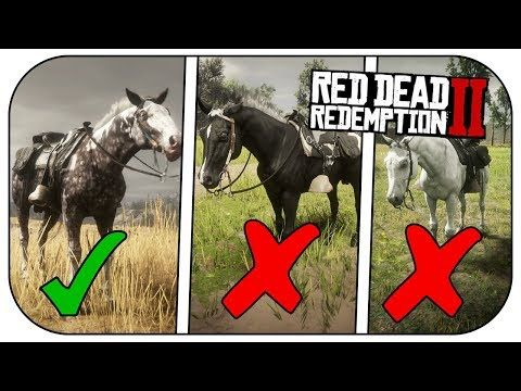 5c1a5a83d80d9c15ae5b5aefad87df2d - How To Get A Donkey In Red Dead Redemption