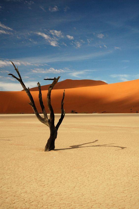 Namibie http://www.terresdecharme.com/lodge-desert_sejour-namibie_safari-en-afrique_voyage-sur-mesure.aspx #voyage #sejour #namibie
