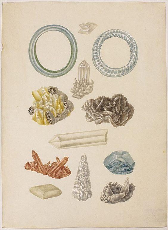 watercolor bracelets made of glass and minerals maria sibylla merian leningrader aquarelle leipzig 1974 bd1 taf22 17041705
