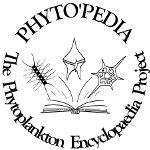EOS - Phytoplankton Encyclopedia Project