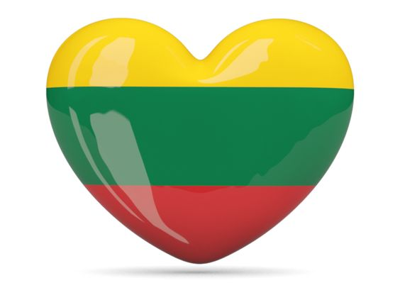 Image result for lithuania flag