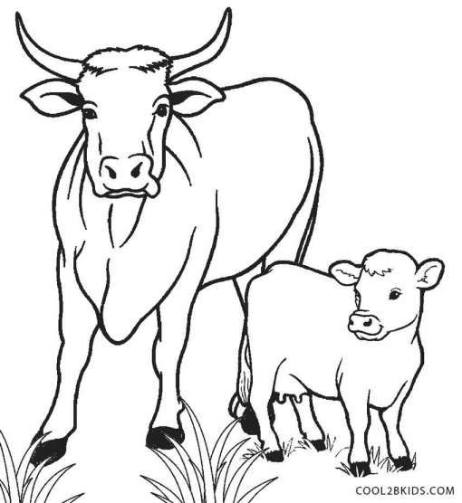 17 Cow And Calf Drawing Animal Coloring Pages Cow Coloring Pages