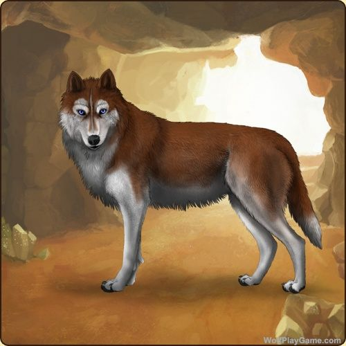 Wolf Play Fun Wolf Game Wolf Breeding Game Wolf Games Breeding Games Animal Games Wolf