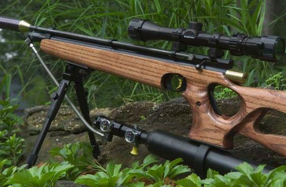 High Pressure Airgun Conversions Crosman 2250 Rws 850