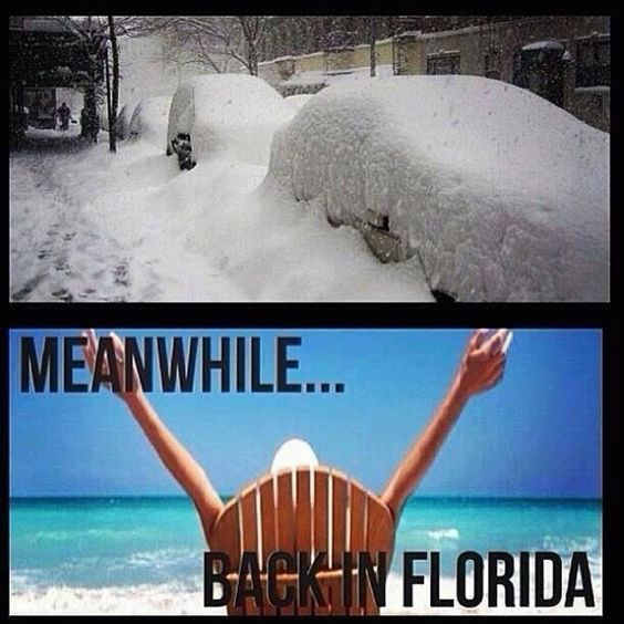 Vacations funny and pretty much on pinterest for Winter vacations in florida