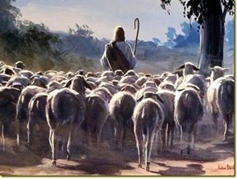 """""""Aki nékem szolgál, engem kövessen; és a hol én vagyok, * ott lesz az én szolgám is: és aki nékem szolgál, megbecsüli azt az Atya.""""  (János 12:26,)"""