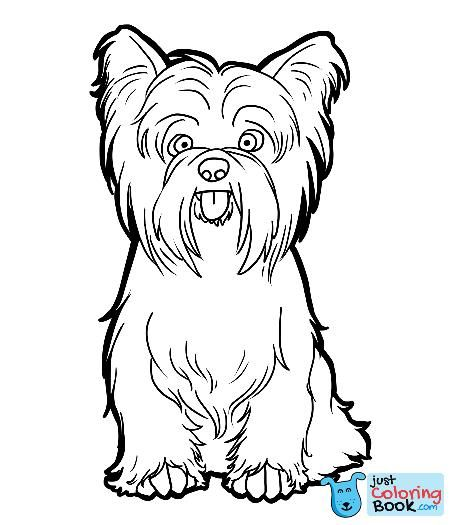 Dessin De Yorkshire A Colorier Recherche Google Yorkies For Funny
