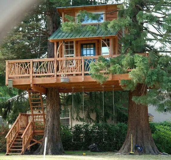 Casa na árvore de um biólogo