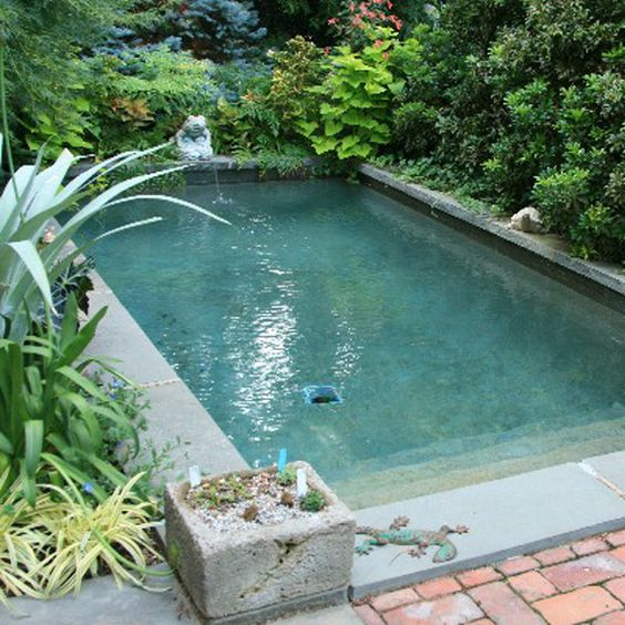 Plunge pool cost pools have constructed the uk s for Small garden swimming pools uk