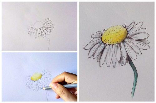 Pin By Jestem Soba On Nauka Rysowania Drawings Learn To Sketch Drawing Inspiration