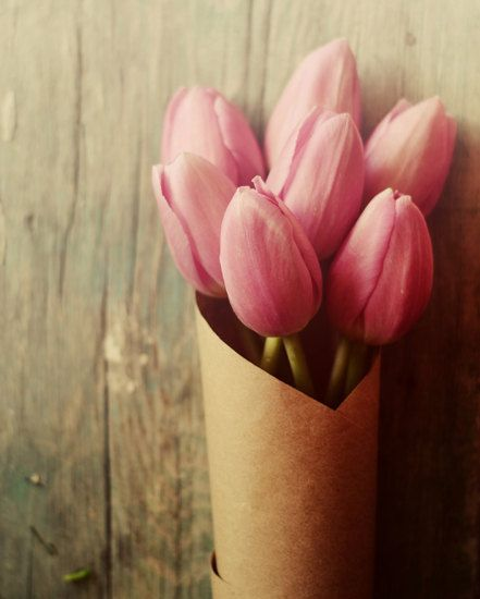Pinterest the world s catalog of ideas for What season are tulips