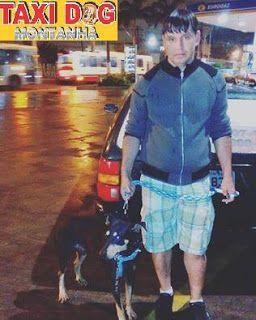TAXI DOG MONTANHA TRANSPORTE DE ANIMAIS NO RIO DE JANEIRO: Jhonny e Tuffão04/12/2015 -- Esse é o nosso amigo...