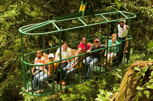 Aerial rainforest tram - Top 10 things to do in St Lucia