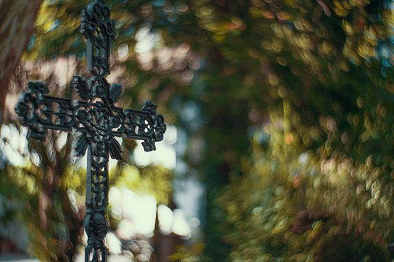 Church Yard, Lost Place, Alter Friedhof, Freiburg, Inspiration, Photography, Crazy, Bokeh, Swirly, Beautiful, fairytale, christina key, christina keys blog, young, talent, märchen, mood,