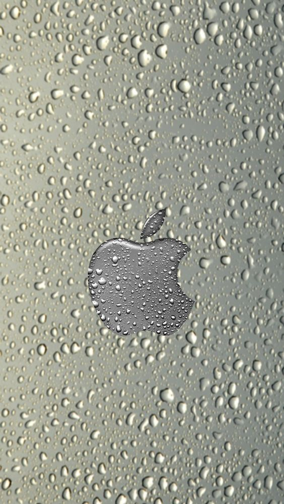 rainy apple Apple iPhone 5s hd wallpapers available for free download.