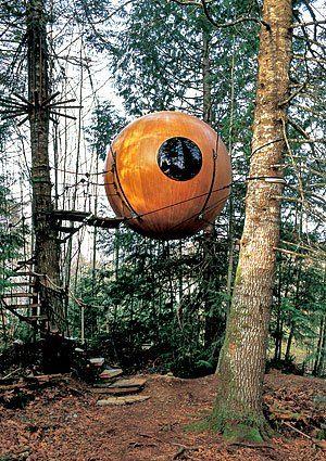 Treehouse Masters Mirrors sphere-tree-house-6 | tiny houses | pinterest | tree houses, tiny