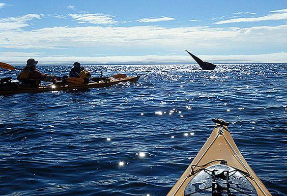 Kayak en Patagonia, Argentina. Es muy cansado pero es divertido!
