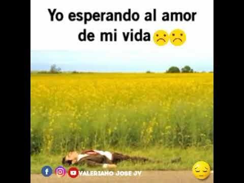 Yo Esperando Al Amor De Mi Vida Youtube Esperar Amor Amor De Mi Vida Memes Divertidos