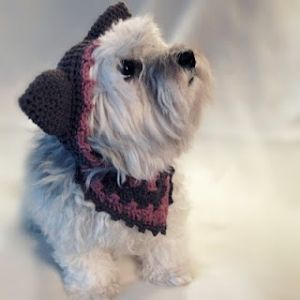 Handmade by Viki: Crochet Pet Hat and Kerchief by michael