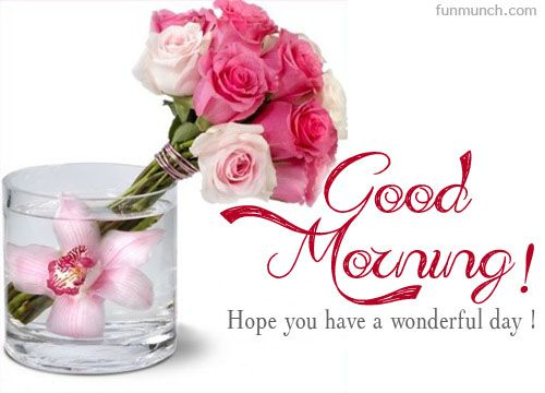 Good Morning Beautiful Pink Roses : Night good wishes and morning images on pinterest