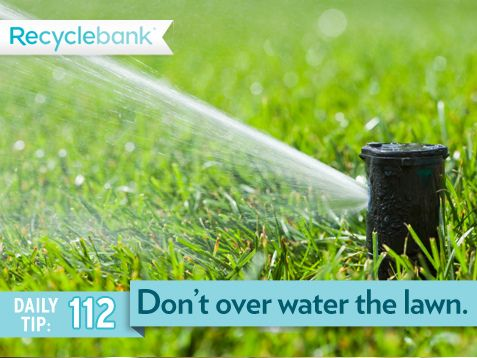 Don't overwater your lawn! Grass only needs 1 inch of water a week and rain water can help you hit that mark.
