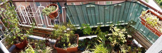 Finalmente balconi nuovi forum di for Idee per coprire ringhiera balcone