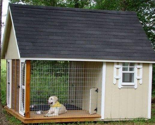 Creative Dog House Build A Dog House Dog House Dog Houses