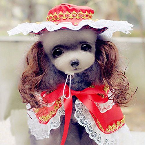 Buyitnow Cute Pet Clothes For Small Dog Princess Costume Suits Lace Shawl Top Hat Curly Wig Want To Know More Clic Princess Dog Pet Clothes Dog Clothes