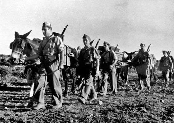 In regions difficult to access, mules carried weapons and munitions. 1936.