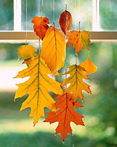 Folhas secas do outono preparadas com cera: