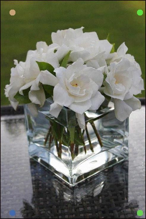 Gardenia As An Idea Wedding Reception Flowers Gardenia Wedding Beach Wedding Flowers